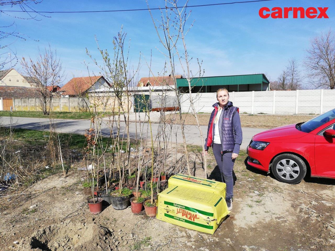 Kompanija Carnex Svetski dan šuma obeležila sadnjom stabala javora i hrasta